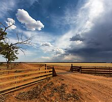 The Dry Storm by David Haworth