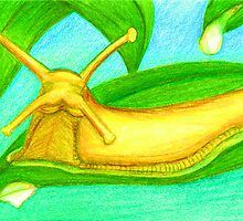 B is for Banana Slug by Nalinne Jones