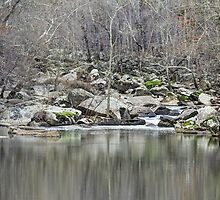 Unami Creek  Green Lane  Pennsylvania  USA by MotherNature