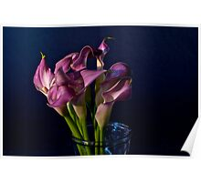 Bunch Of Calla Lilies Poster