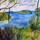 West Head NSW by Barbara Cliff
