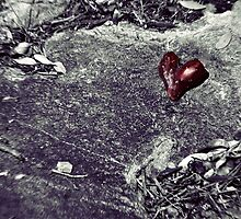 Battlefield of Love by Trish Mistric