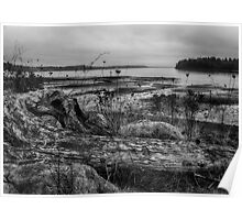 South Puget Sound Winter Landscape Poster