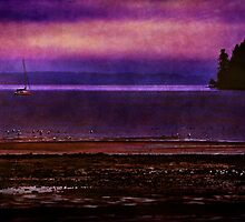 Sailing in Puget Sound by Lynnette Peizer