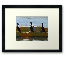 On the Count of Three.... Framed Print