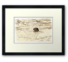 A PLACE OF NO PLASTIC is FANTASTIC! Framed Print