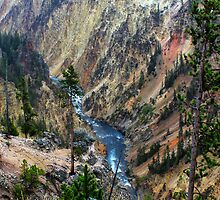 Grand Canyon of Yellowstone by Charles Kosina
