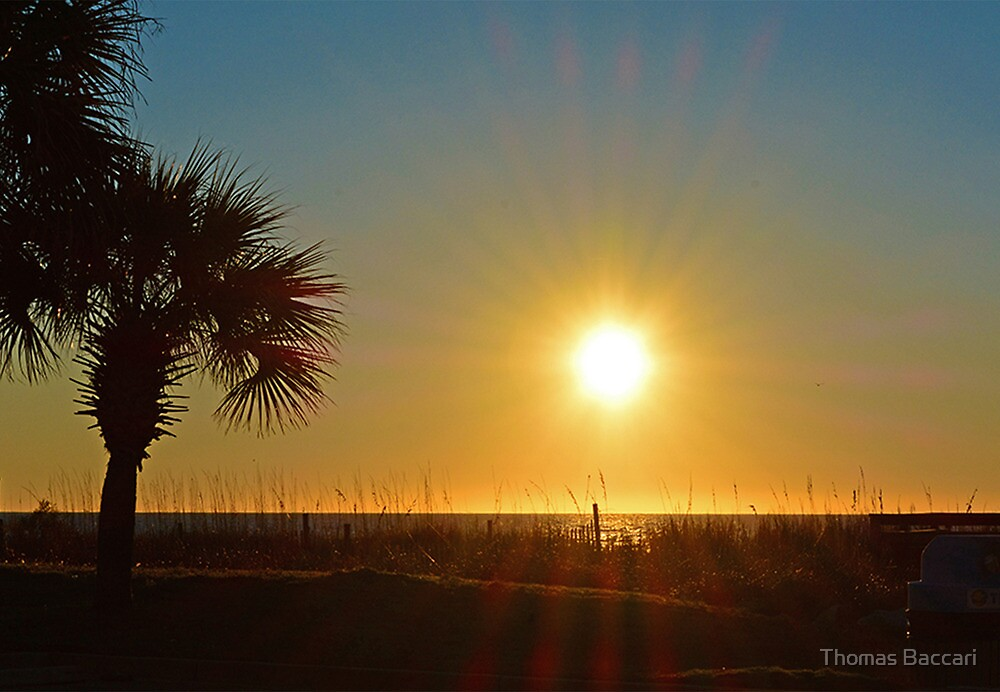 Sunrise This Morning Jan 20th 2014 #2 by TJ Baccari Photography