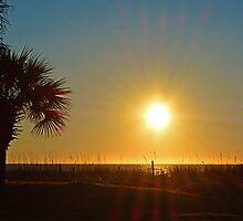Sunrise This Morning Jan 20th 2014 #2 by imagetj