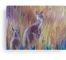 Kangaroos in Long Grass Metal Print