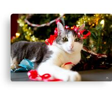 Christmas is for everyone! Canvas Print