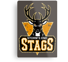 STORM'S END STAGS Metal Print