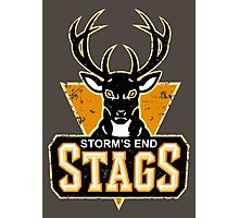 STORM'S END STAGS Photographic Print