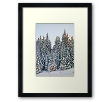 Vail Mountain Forest Study 3 Framed Print