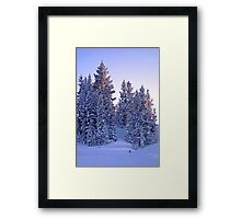 Vail Mountain Forest Study 4 Framed Print