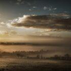Misty Dawn by Tobias King