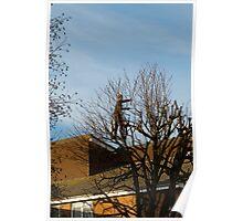Tree Surgeon Poster