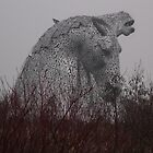 Kelpies 3 Grangemouth by Jackie Wilson