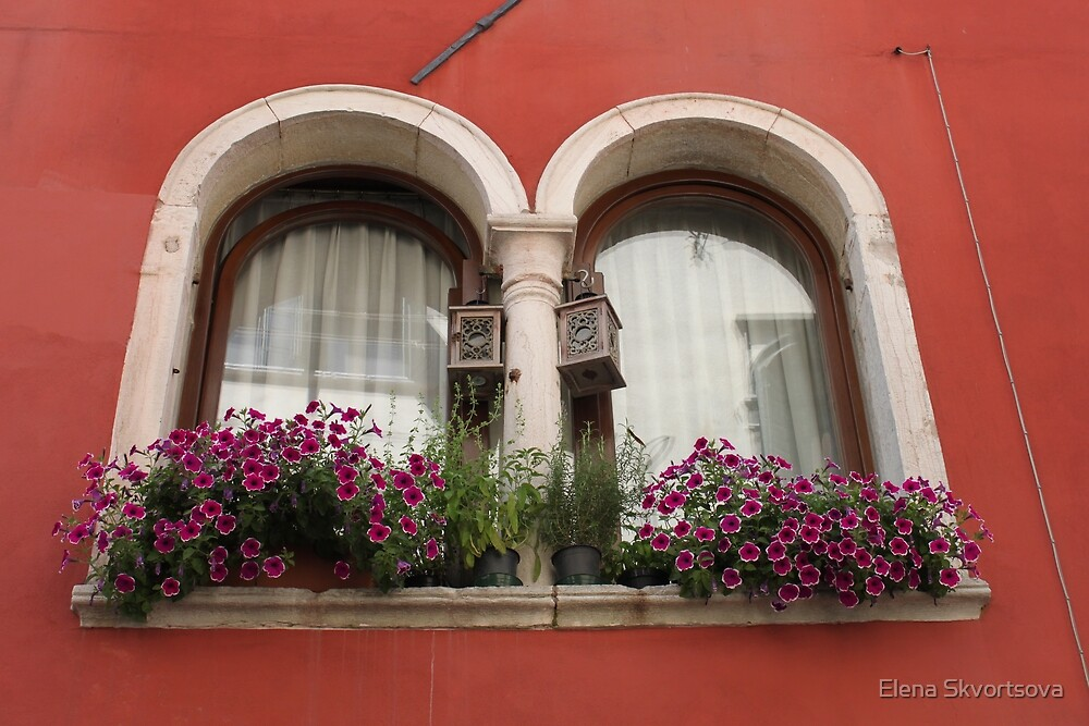 Venetian Windows by Elena Skvortsova