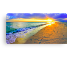 panoramic sunset beach shells landscape art Canvas Print