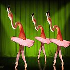 Dance of the Flamingos by FrankWermuth