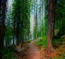 Mountain Path by WishesandWhims