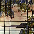 Tiffany Glass, Metropolitan Museum of Art, New York City by lenspiro
