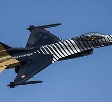 "F16 Fighting Falcon ""Solo Turk""   by PhilEAF92"