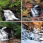 Mohican Falls In Every Season by Gene Walls