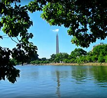 Washington Monument by Sarah Miller