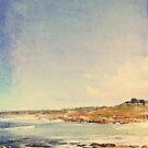 Carmel by alexandraliew