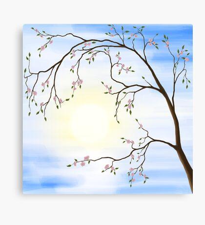 Cherry Blossom art photo print Canvas Print