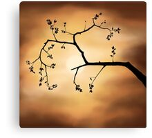Cherry Blossom over Dramatic Sky art photo print Canvas Print