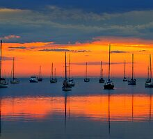 Dawn - Corio Bay by Hans Kawitzki