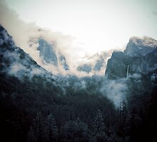 Yosemite in the Mist by Lenore  Humes