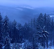 Blue Winter Landscape by intensivelight