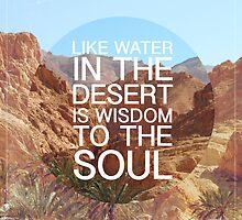 Desert Wisdom by Joel Stone