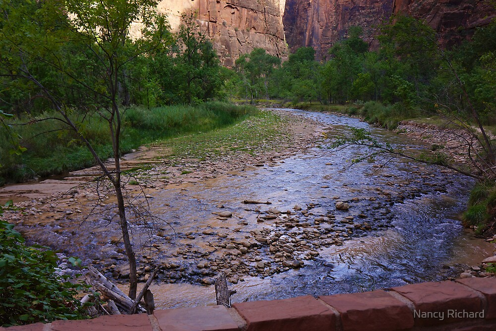 Magic river light ! by Nancy Richard