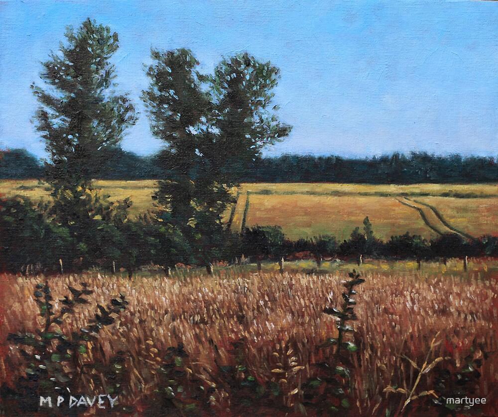 Dorset Countryside Golden Fields in Summer by martyee