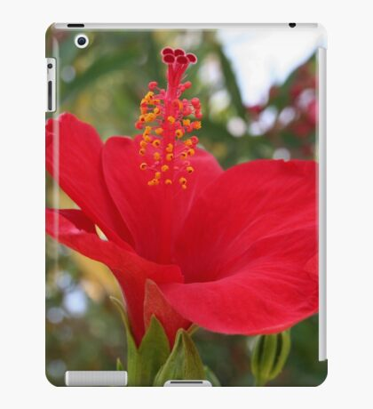 Soft Red Hibiscus With Natural Garden Background iPad Case/Skin