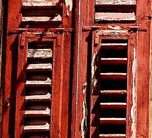 The Window Shutter by Imi Koetz