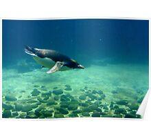 Deep Diver Poster