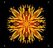 Summer Blaze by Belinda Osgood