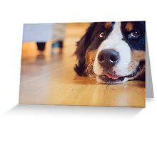 it's just one of those days. Greeting Card