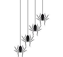 Spiders Design by Style-O-Mat