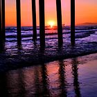 Sunset stroll by Tammy  (Robison)Espino