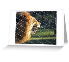 Caged Beast Greeting Card