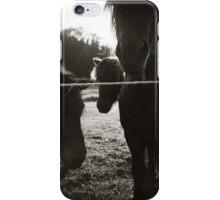 { pony pals } iPhone Case/Skin