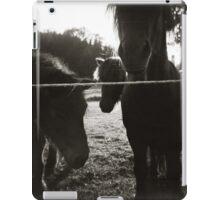 { pony pals } iPad Case/Skin