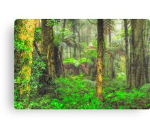 RainForrest Dreaming #2 - Mount Wilson NSW - The HDR Experience Canvas Print
